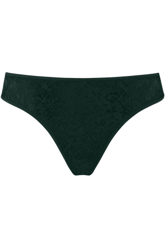 Space Odyssey 5 Cm Briefs    Pine Green Lace - Xs