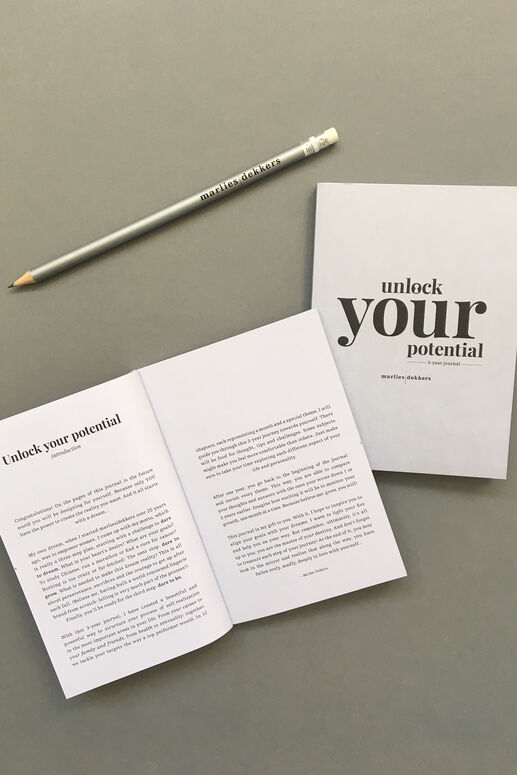 unlock your potential: 3-year journal