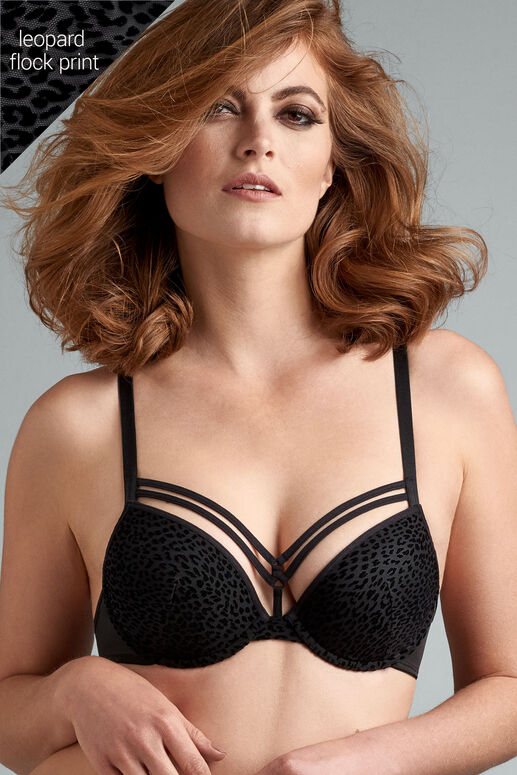 feline jazz push up bra