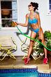 papillon plunge balconette bikini top