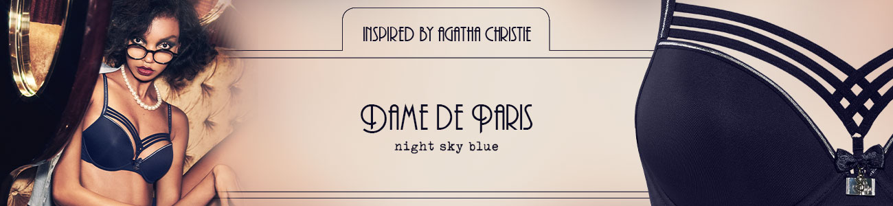 FW20 collection Dame de Paris night sky blue header banner