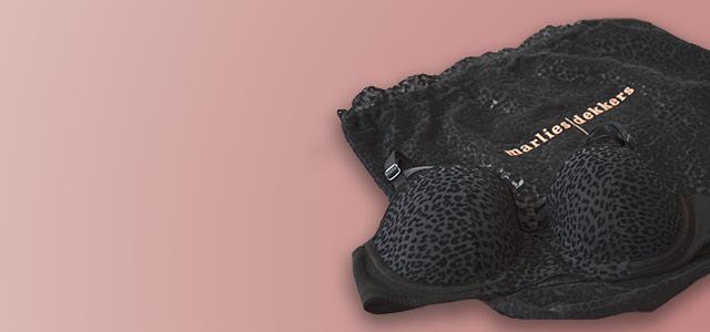 feline jazz gift bag