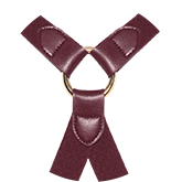 beautiful bordeaux of matching straps