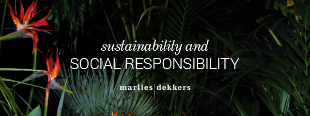 sustainability and social responsibility header banner
