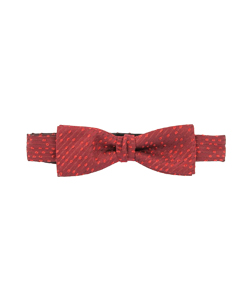 Signature Dame de Paris bow